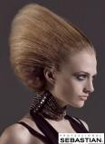 Extravagantní vlasový