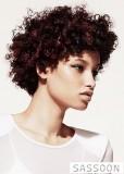 Krátké afro hnědé barvy