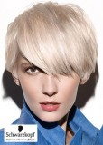 Dámský krátký prostříhaný účes blond platinové barvy, s ofinou přez oko
