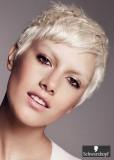 Krátký sestříhaný účes blond platinové barvy, s jemně zdůrazněnými pramínky na temeni