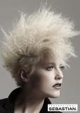 Zkrepované vlasy blond barvy, krátkého střihu ve stylu punk