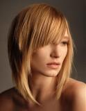 Polodlouhé sestříhané mikádo z rovných vlasů blond medové barvy